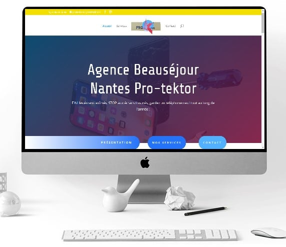site internet de Protektor